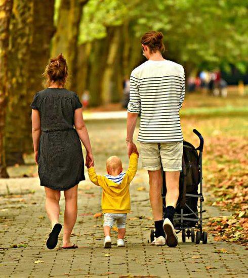 Formando nuevas generaciones