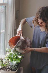 Sembrando nutrición: huertos caseros