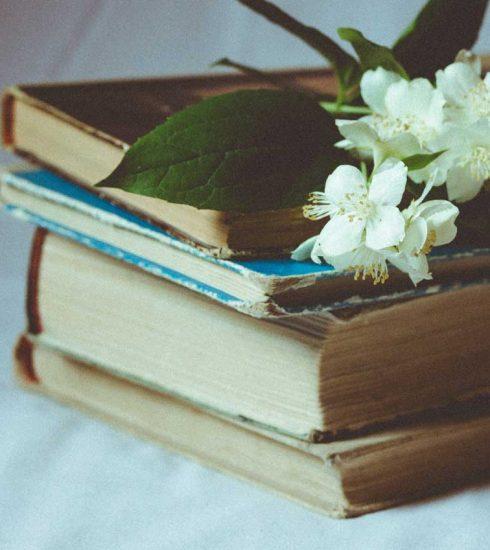 Para combatir el analfabetismo, las armas son los lápices y los libros